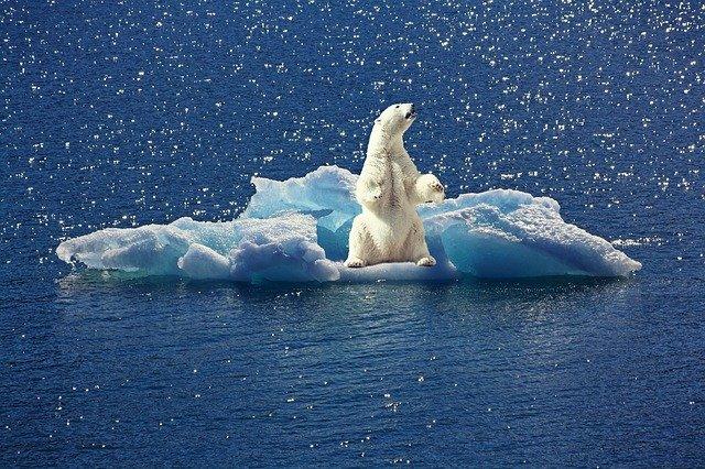 Quelles seront les conséquences sanitaires du réchauffement climatique pour les générations à venir ?